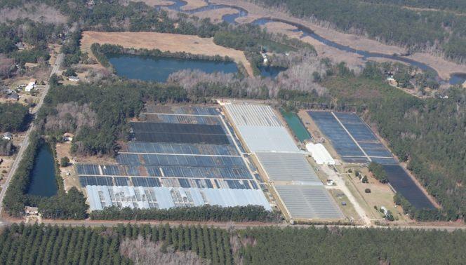 Vista aérea de instalaciones de un invernadero.