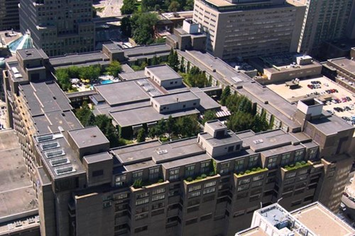 Rooftop gardening at Hilton Place Bonaventure in Montreal