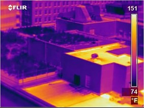 Infrared Image of Chicago City Hall Green Roof.