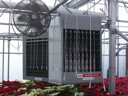 Check heater to make sure it is working properly to minimize possible ethylene production in the greenhouse
