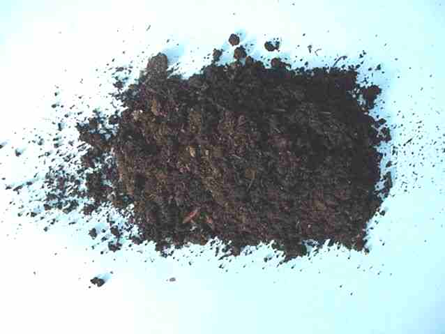 Compost is often used for organic growing by PRO-MIX