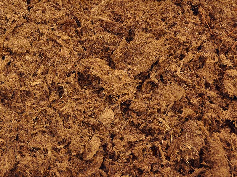 What Are The Grades Of Peat Moss Pro Mix Greenhouse Growing