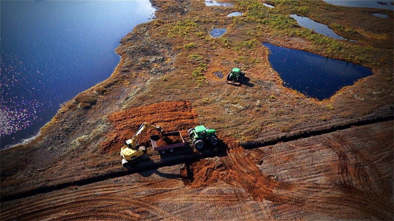 Re-introduction of live sphagnum peat moss to a bog that is being restored in Pointe-Lebel, Quebec. Source