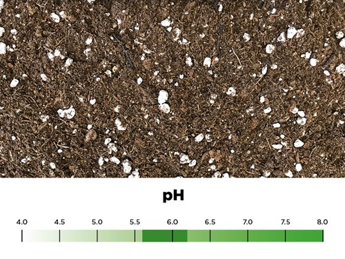 How To Maintain The Proper Ph Of A Growing Medium Pro Mix Greenhouse Growing