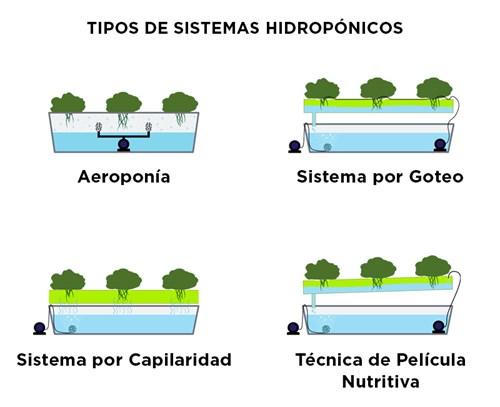 Tipos de Sistemas Hidropónicos